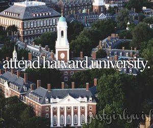 harvard, school, and university image