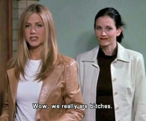 friends, bitch, and quotes image