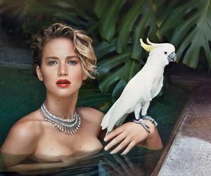 Jennifer Lawrence, photoshoot, and Vanity Fair image