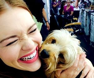 holland roden, teen wolf, and dog image