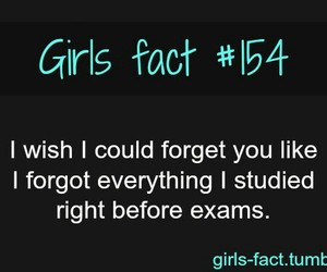 quote, exam, and forget image