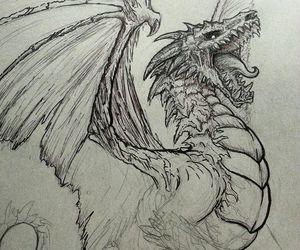 dragón image