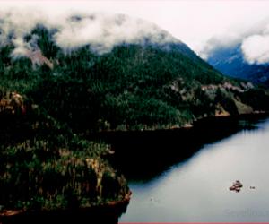 calm, solitude, and fog image