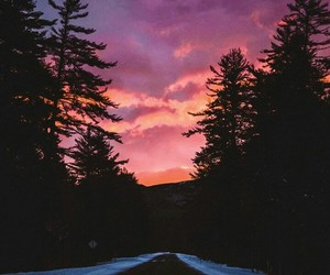 nature, New Hampshire, and pink image