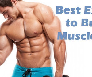 exercises, fitness, and workout routine image