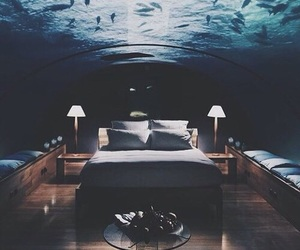 room, fish, and bed image