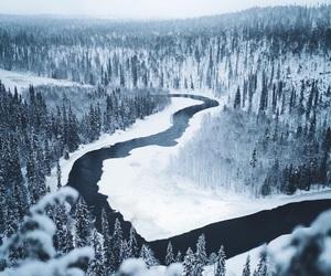 amazing, gorgeous, and paradise image