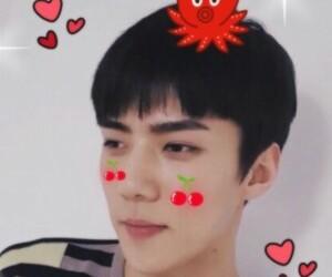 exo, mochi, and sehun image