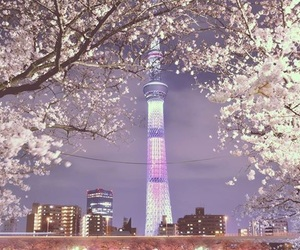 japan, tokyo, and sky tower image
