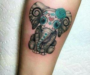 tatto and elefante image