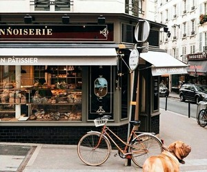architecture, dog, and paris image