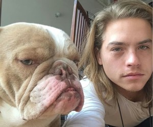 handsome and dylan sprouse image