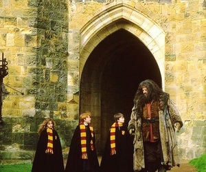 harry potter, hagrid, and ron weasley image