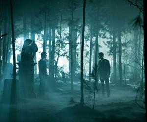 ian somerhalder, Vampire Diaries, and paul wesley image