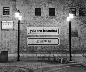 black and white, quotes, and street image