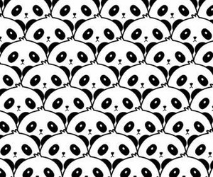 panda, wallpaper, and background image