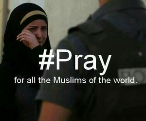 islam, muslim, and pray image