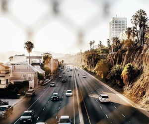 cars, summer, and palms image