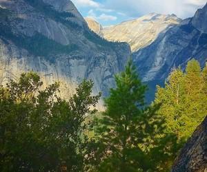 california, nature, and yosemite image