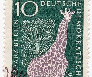 1960s, ephemera, and stamp image