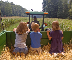 blue, country, and kids image