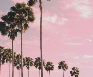 colors, indie, and pink image