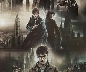 harry potter, newt scamander, and hogwarts image