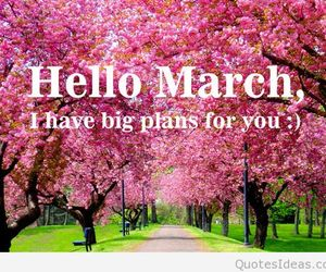 flowers, life, and march image