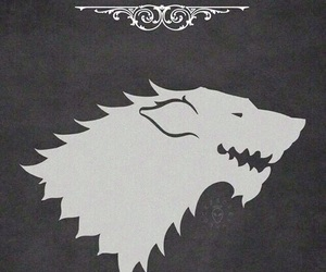 got, game of thrones, and house stark image