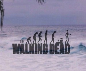beach, wallpaper, and walking dead image