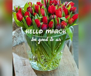 march, spring, and morning+ image