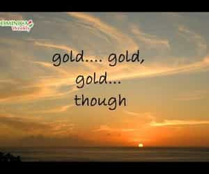 video and staygold image