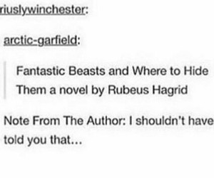 harry potter, tumblr, and hagrid image