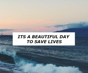 grey's anatomy, quotes, and wallpaper image