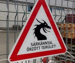 magyar, sarkany, and vicces image
