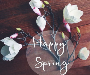 flowers, magnolias, and spring image