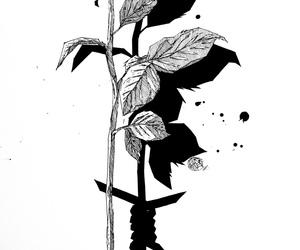 Image by Pasadomata