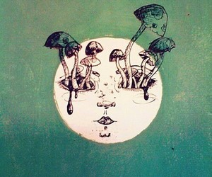 moon, mushroom, and trippy image