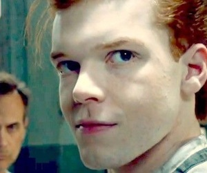 Gotham and jerome valeska image