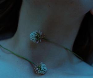Image by Ella Rose