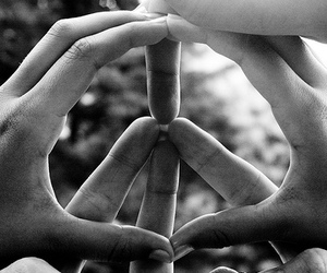 fingers and peace image