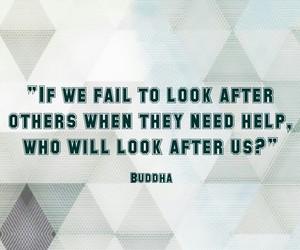 Buddha, quotes, and wisdom image
