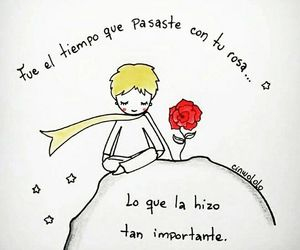roses, you, and the little prince image