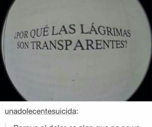 frases, pain, and lágrimas image
