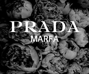 Prada, background, and fashion image