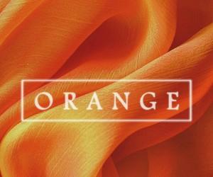 wallpaper and orange image