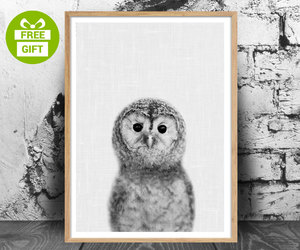 cute animals, wall art, and owl print image