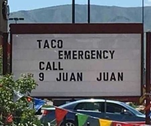 taco, funny, and puns image