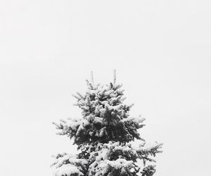 minimalist, snow, and snowy image