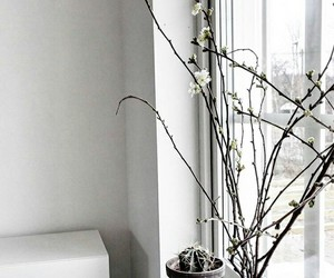 aesthetic, minimal, and room decor image